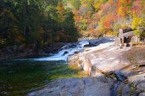 赤沢の渓谷と紅葉