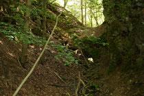 Felseinschnitt mit Stollen (Foto: D. Funk)