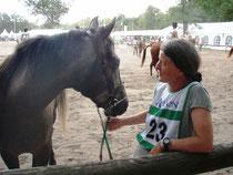 cavalière et cheval