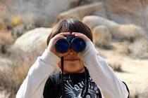 Über die Stichwortsuche der Naturheilpraxis finden Sie schnell den richtigen Inhalt.