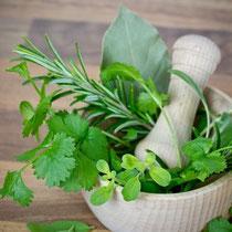 Phytotherapie / Kräuterheilkunde - Heilen mit der Kraft der Natur