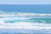 mini simmons surfboard minos
