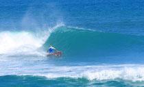 mini simmons elleciel surfboard