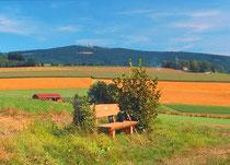 Ausblick vom Kesslsimerhof