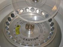 Rotor einer Zentrifuge