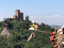 Burgen im Pfälzerwald