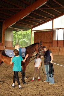 Die Kleinsten mit ihrem ehemaligen Volti-Pony Ronja