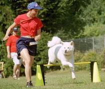 Turnierhundesport mit Bizen