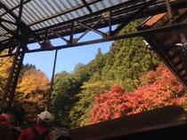 滝本駅 9:50