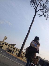陸前高田・奇跡の一本松(2014.3.3)