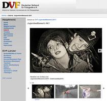 Galerien online auf der DVF Seite