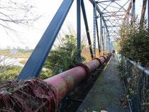 相模川の「上郷水管橋」