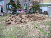 2011年5月9日開墾