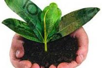 Rondonia sustentabilidade
