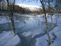 普段は雪原の下で凍っているはずの小川