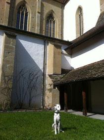 Weiterbildung im Kloster Kappel