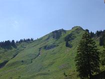 Blick auf den Hochgern Gipfel