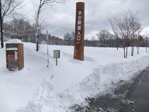 26年3月22日雪の殿堂