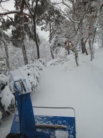 3月21日 雪の殿堂