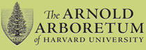 The Arnold Arboretum of Harvard University.