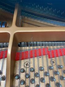 切れた弦。