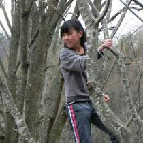 五感や脳も育てる木登り