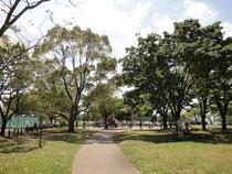 千葉県我孫子市手賀沼公園