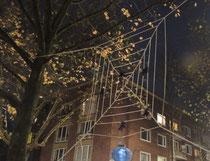 Spinnenweben auf dem Platz ohne Namen