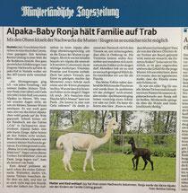 Oh unsere kleine Ronja hat es in die Zeitung geschafft! Hier ein kleiner Bericht über ihre ersten Trinkversuche (MT 12.5.2020)