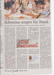 Stormarner Tageblatt 17.07.10