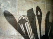 Verena N.  / pixelio.de