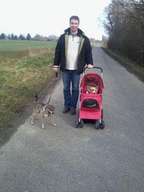 So gehen wir spazieren, wenn Phieby nicht mehr kann :-D