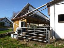 Studie Solaranlagen und Kuhstall für Gülle