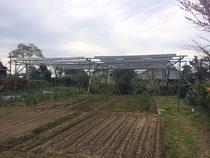 実証実験をして農作物を育てるソーラーシェアリング