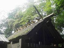 62回目の式年遷宮を迎える伊勢神宮。周囲には貴重な森林環境が広がる Photo by ippoqqi