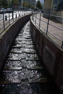 雨水は下水に流さず、水路を経て、湾に戻される