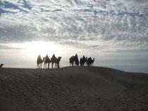 xcursión en el Sáhara