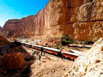 Tren Lagarto Rojo