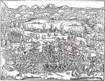 Holzschnitt von Hans Aspers aus dem 16. Jh. Links die Eidgenossen, rechts der Habsburger Heerhaufen, deutlich zu erkennen das Freiburger Banner.