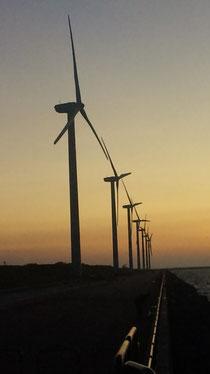 10機の風車群