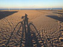 Strand Biketour Fahrrad Valencia Hafen Fahrradtour