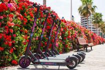 Biketour Fahrrad Valencia Fahrradtour lonja altstadt