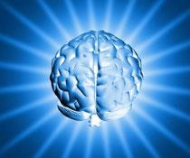 ☆脳を活性化する!シナプソロジ―