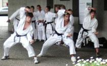 Bilder Karatee-demo Strättligenfest
