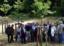 Esskastanienallee mit Besuchern (Foto: Dr. W. Kemmer)