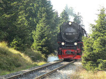 Die Brockenbahn Höhe Goetheweg