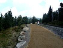 Wanderweg vom Hirschheiner Bhf zur Brockenstraße