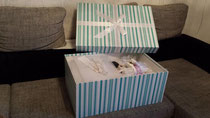 Brautkleidbox