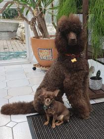 Ayoomi und Mabel Oktober 18