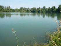 Korbgrundsee (Müllersee)